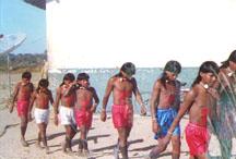 indigenous2